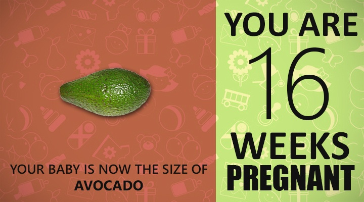 16 Weeks Pregnant Guide