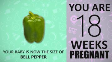 18 Weeks Pregnant Guide